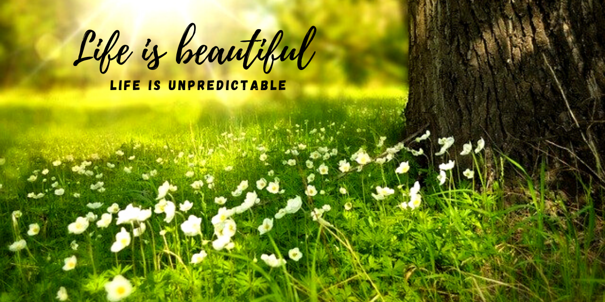 Life is beautiful _ Life is unpredictable